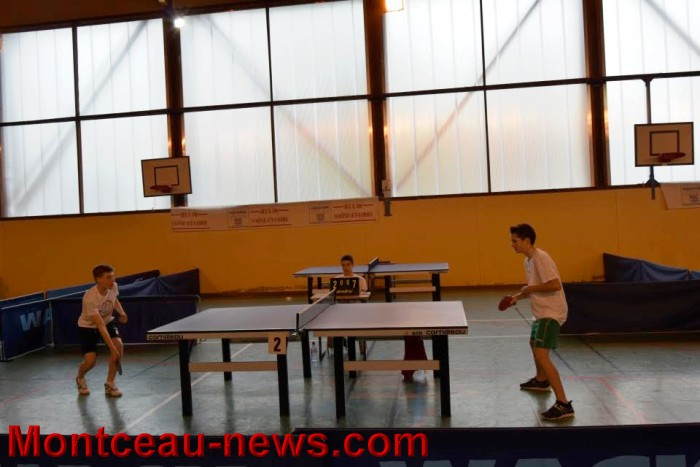 tennis table 0805165