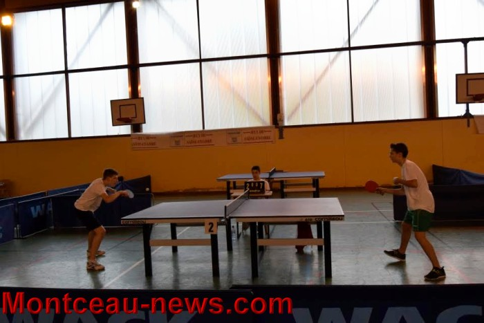 tennis table 0805166