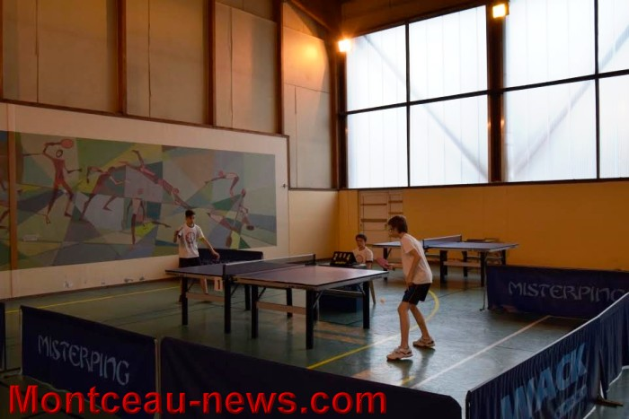 tennis table 0805167