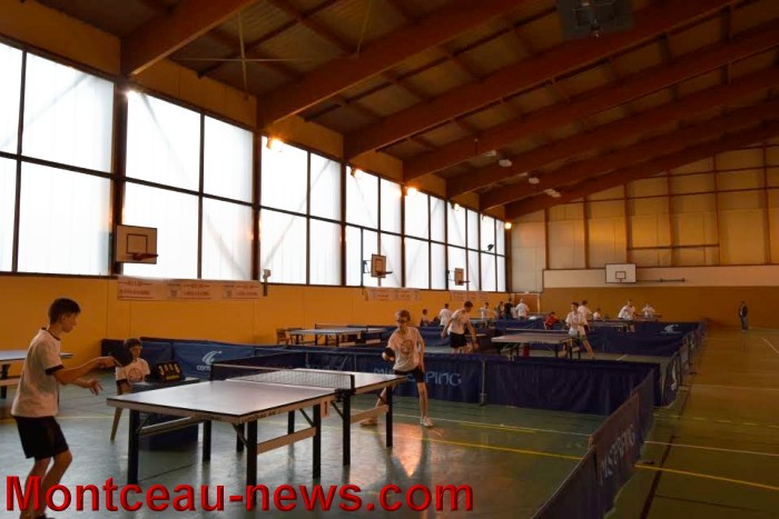 tennis table 0805168