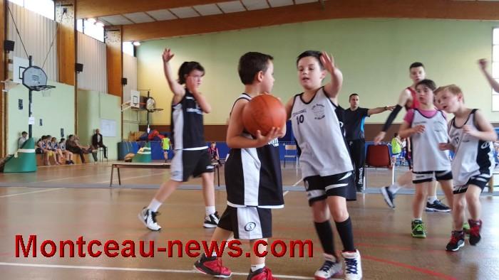 basket 03061610