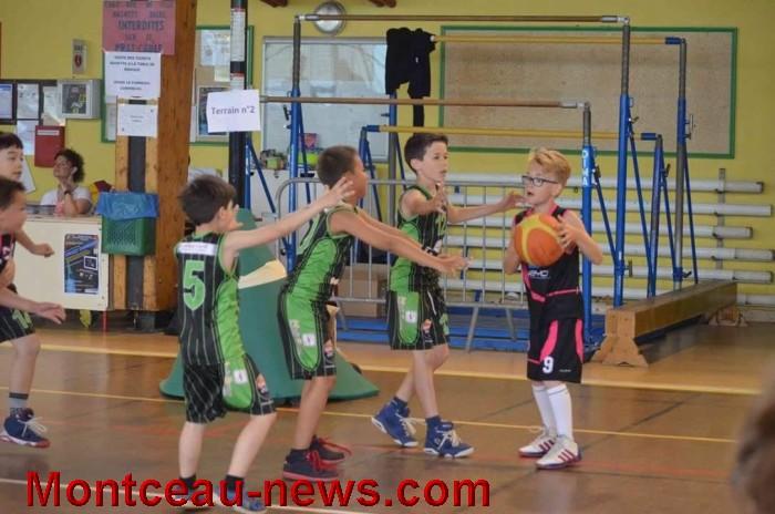 basket 0306162