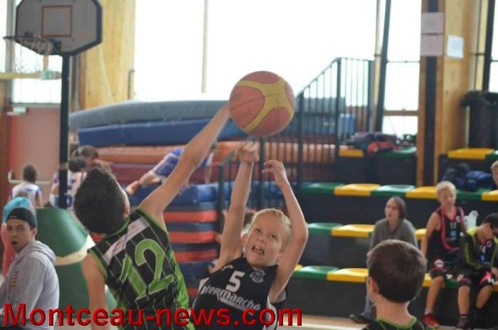 basket 0306163