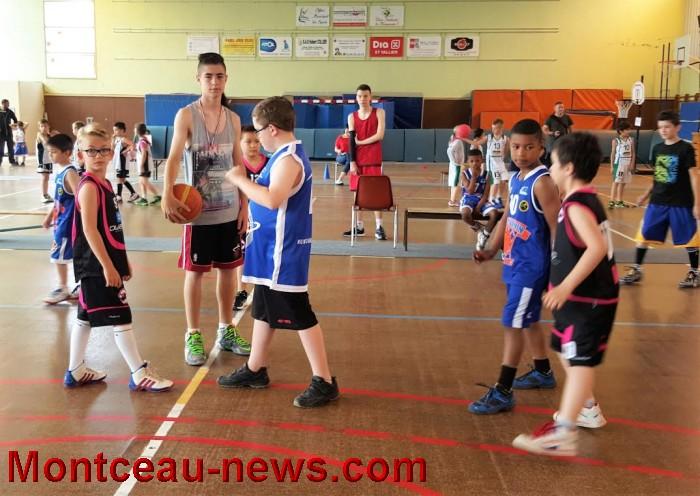 basket 0306168