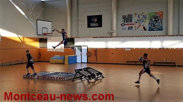 basket 29061616