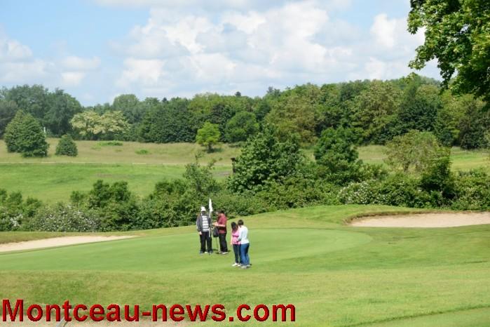 handi golf 0806165