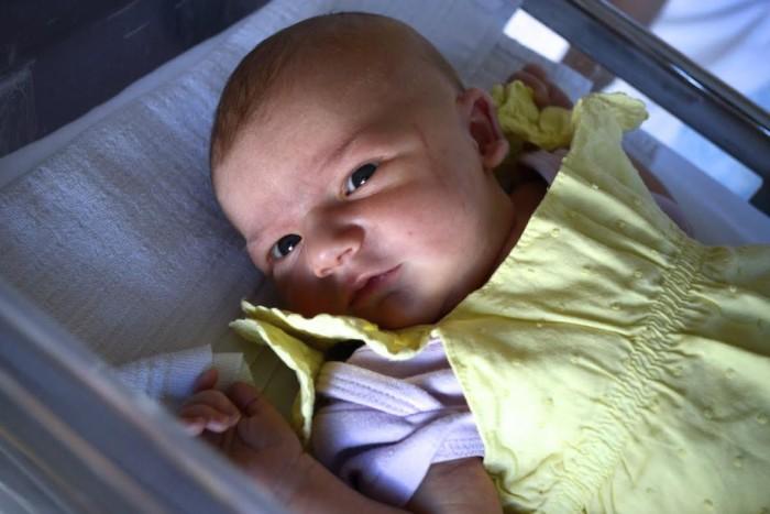 bebe celizia 3007162
