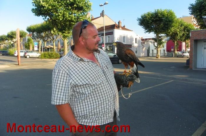 oiseaux 2707164