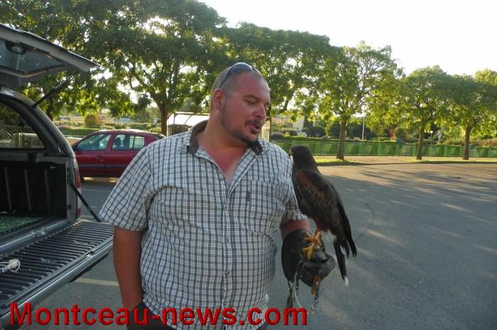 oiseaux 2707166