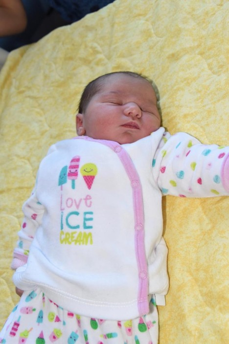 bebe alice 1508168