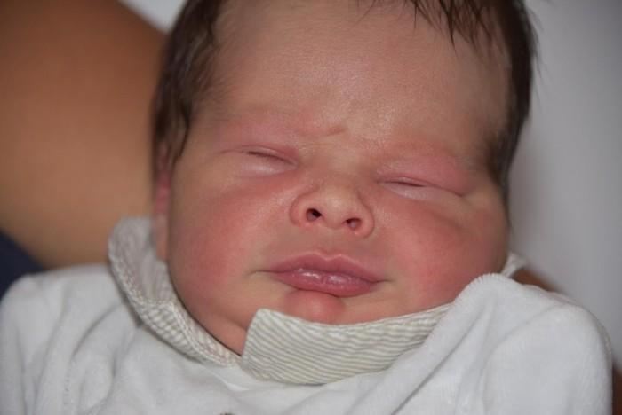 bebe eden 1808162