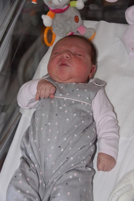 bebe louna 1908166