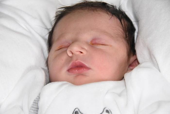 bebe luka 1208162