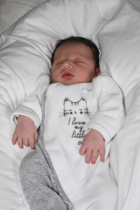 bebe luka 1208163