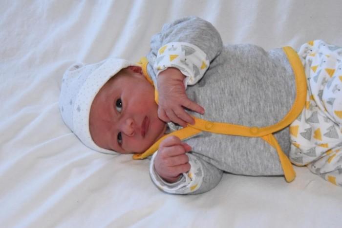 bebe robin 1108165