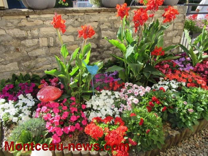 fleurs blanzy 14081611