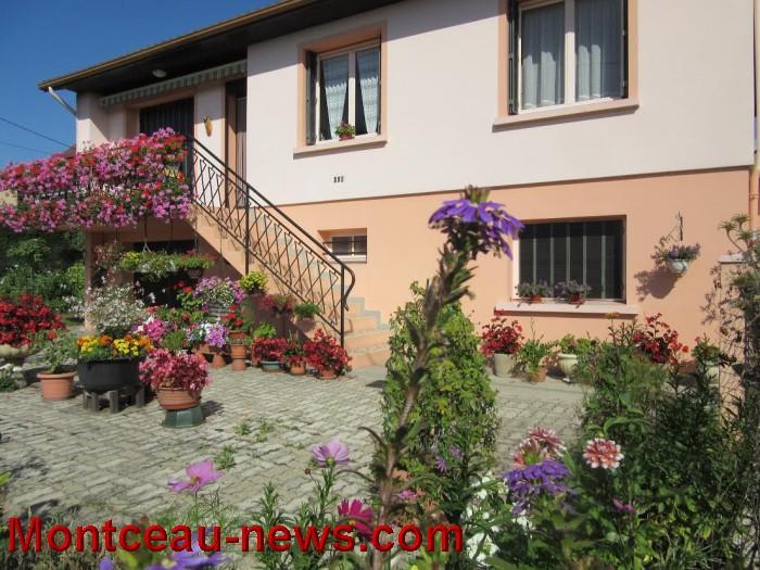 fleurs blanzy 14081613