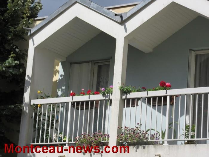 fleurs blanzy 14081614