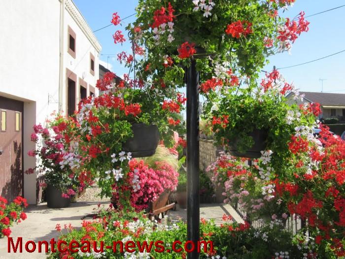 fleurs blanzy 14081615