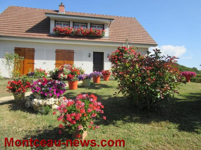 fleurs blanzy 14081616