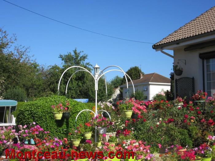fleurs blanzy 14081618