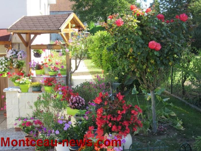 fleurs blanzy 14081623