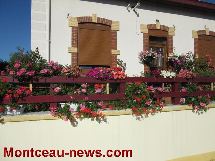 fleurs blanzy 1408164