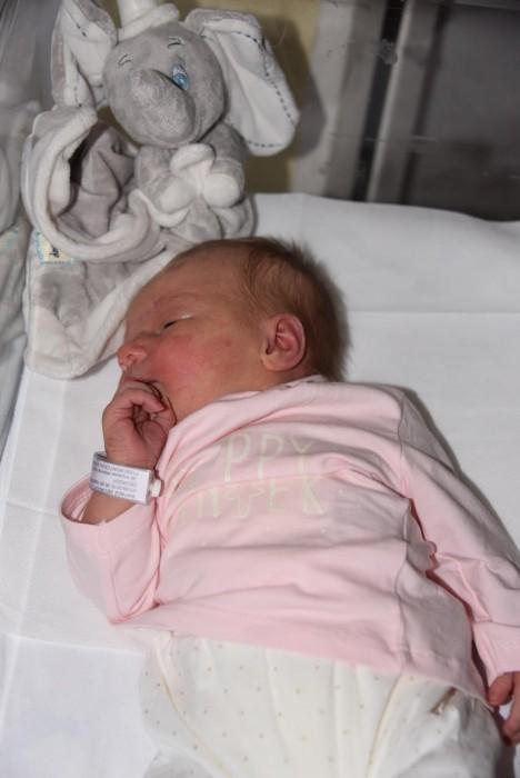 bebe-alicia-1409162
