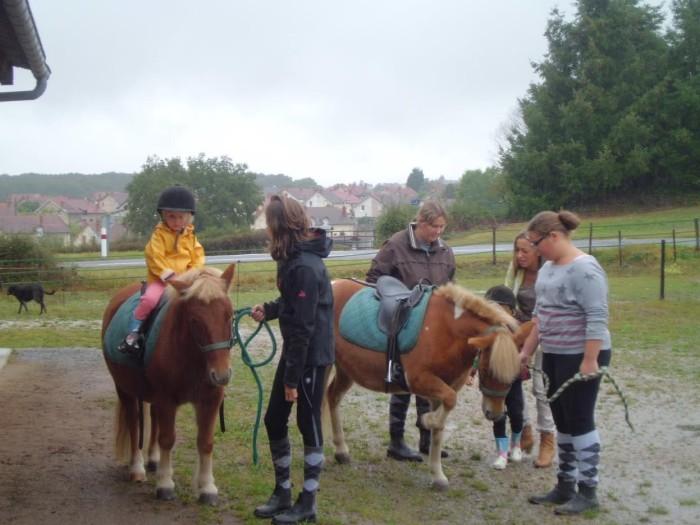 poney-s-2109164