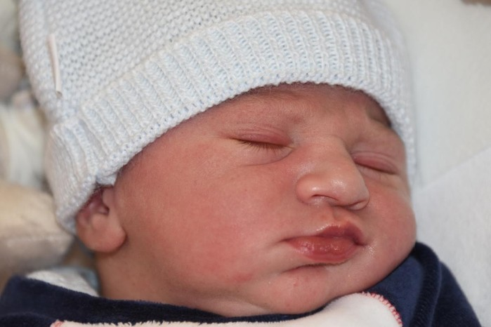 bebe-bradlay-3110162