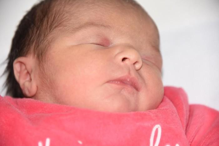 bebe-elena-2110162