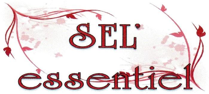 logo-sel-essentiel-15-11-16