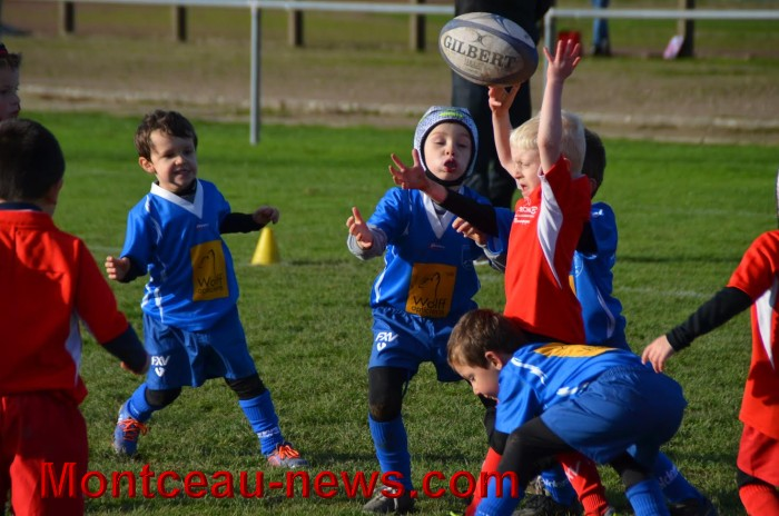 rugby-2211163