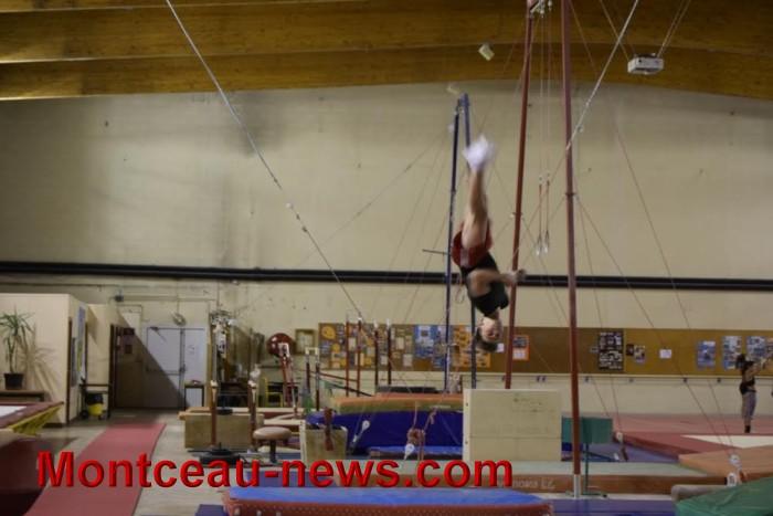 top-gym-1811162