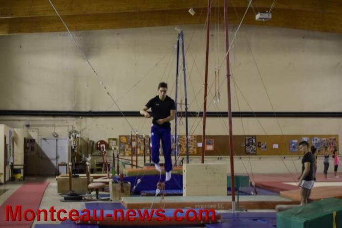 top-gym-1811164