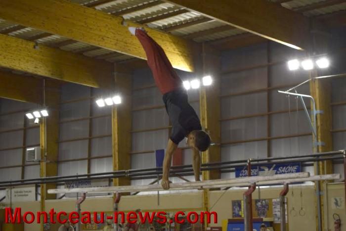 top-gym-1811167