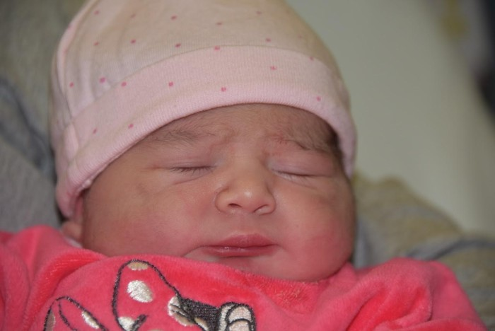bebe louise 2801172