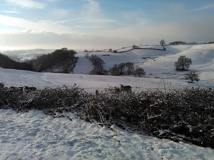 Photos de neige de nos lecteurs…