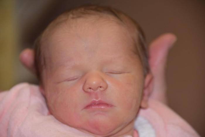 bebe jade 1503172