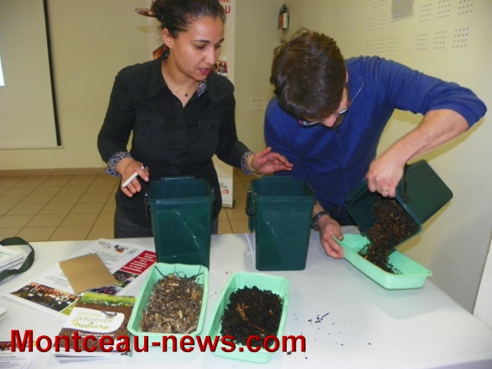 compost 0504174