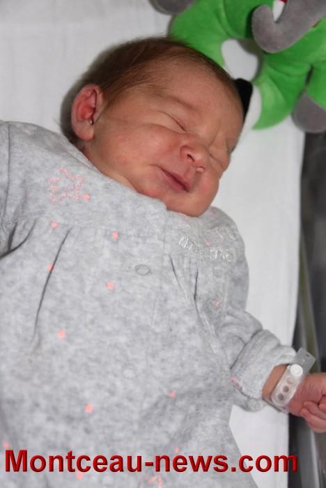 bebe lily 2805176