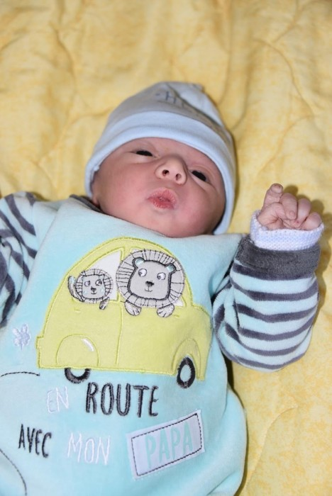 bebe nolan 2805178