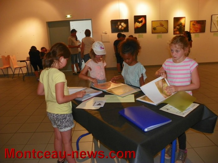 Exposition (Blanzy)