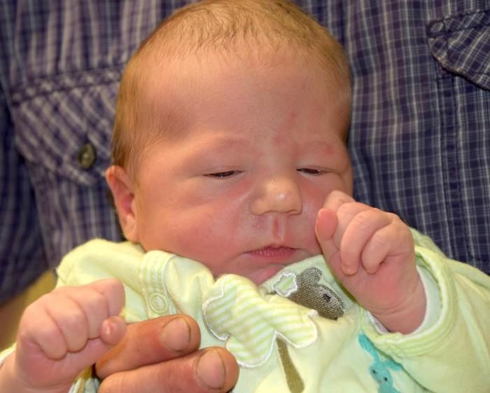 bebe prune 2406172