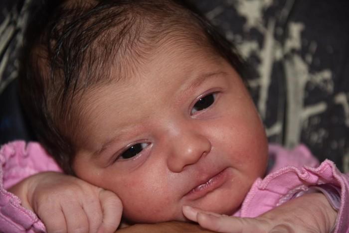 bebe emili 1608173