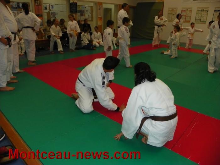 judo 10101711