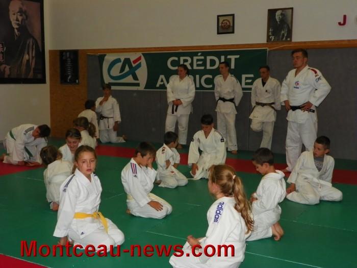 judo 10101714