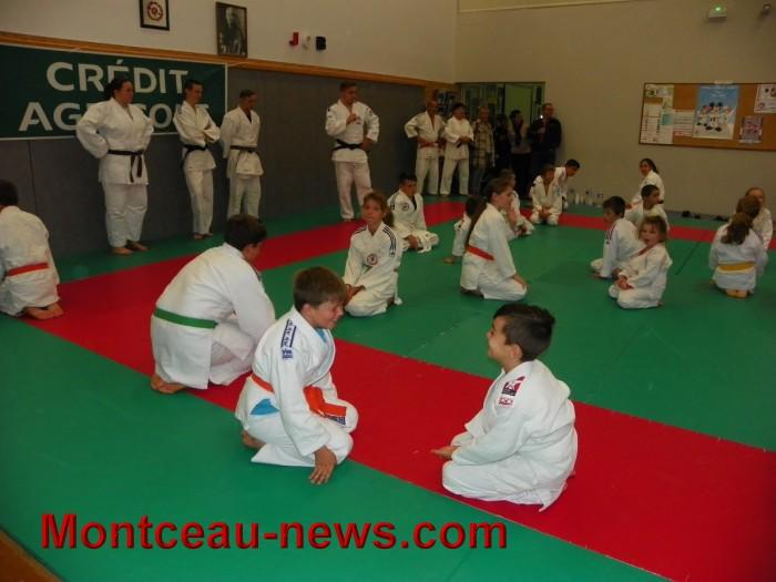judo 10101715