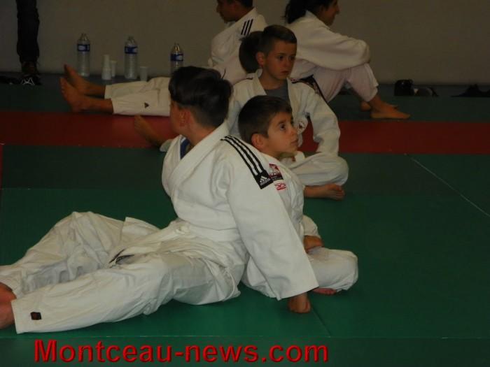 judo 10101722
