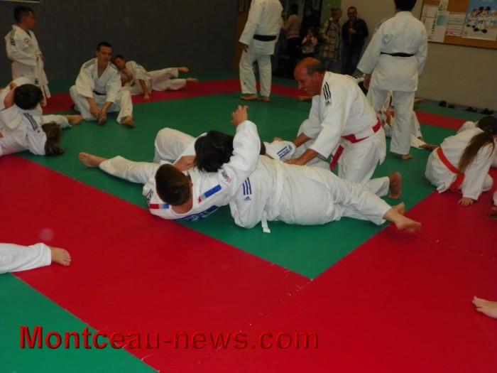 judo 10101731
